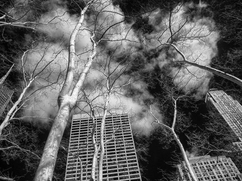NYC2014-0392-Edit