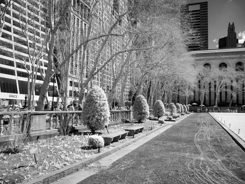 NYC2014-0354-Edit