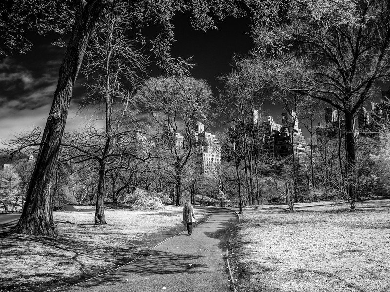 NYC2014-2791-Edit