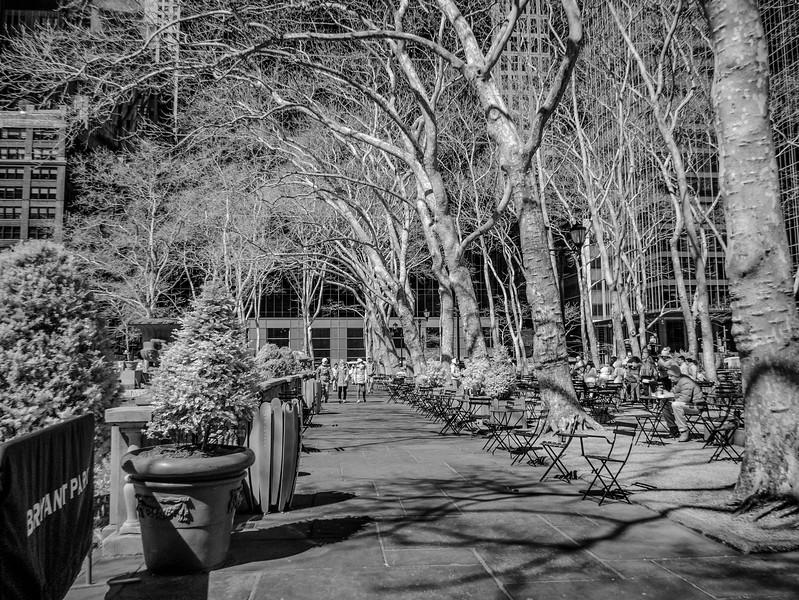 NYC2014-0322-Edit