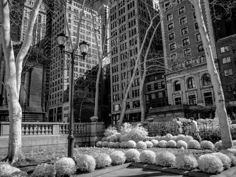 NYC2014-2994-Edit