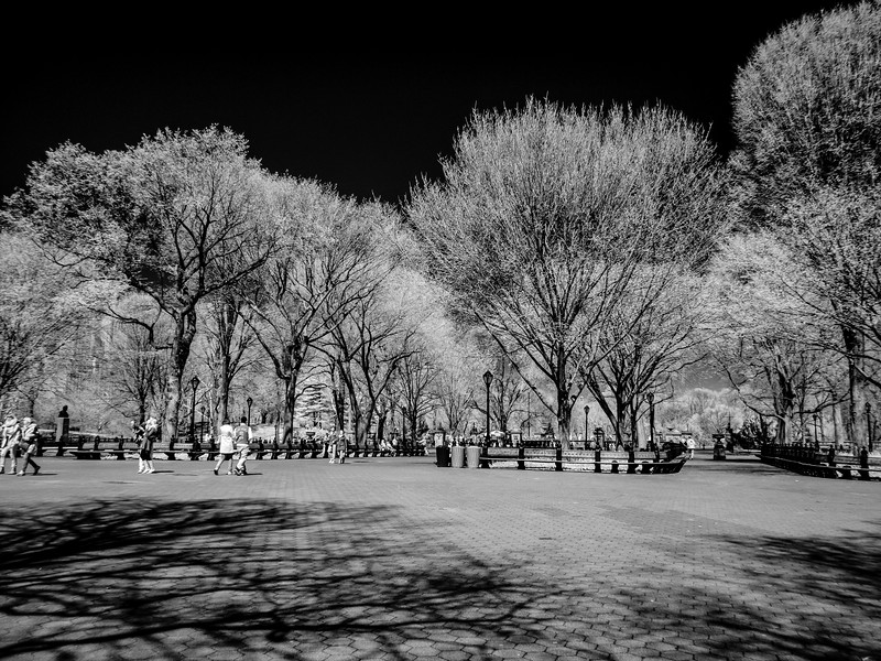NYC2014-2824-Edit