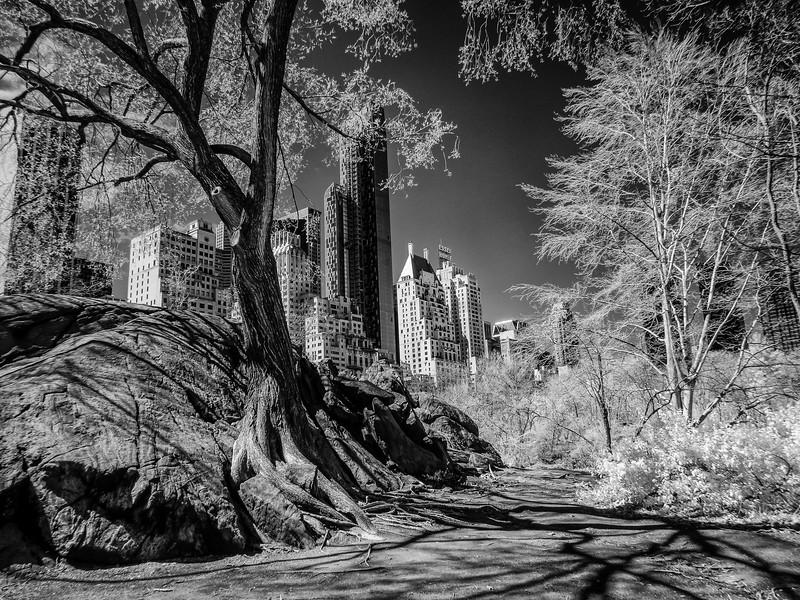 NYC2014-2768-Edit
