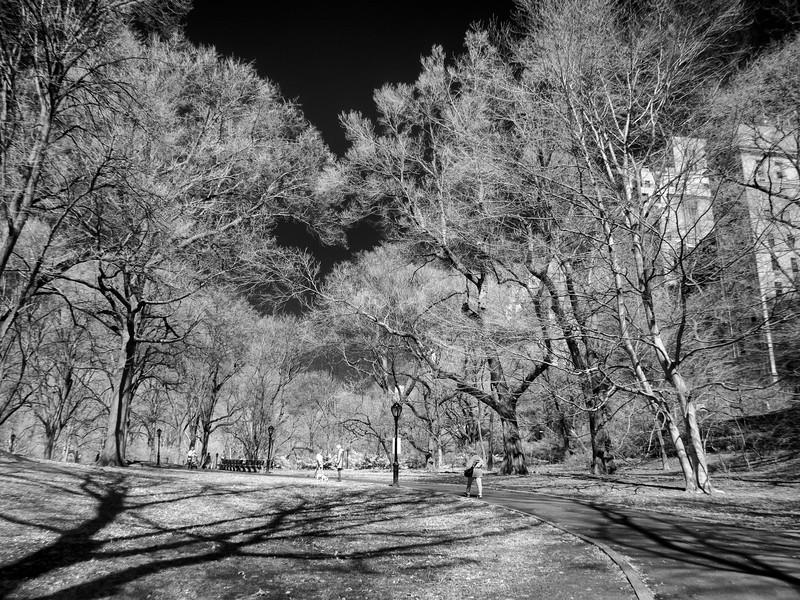 NYC2014-2950-Edit