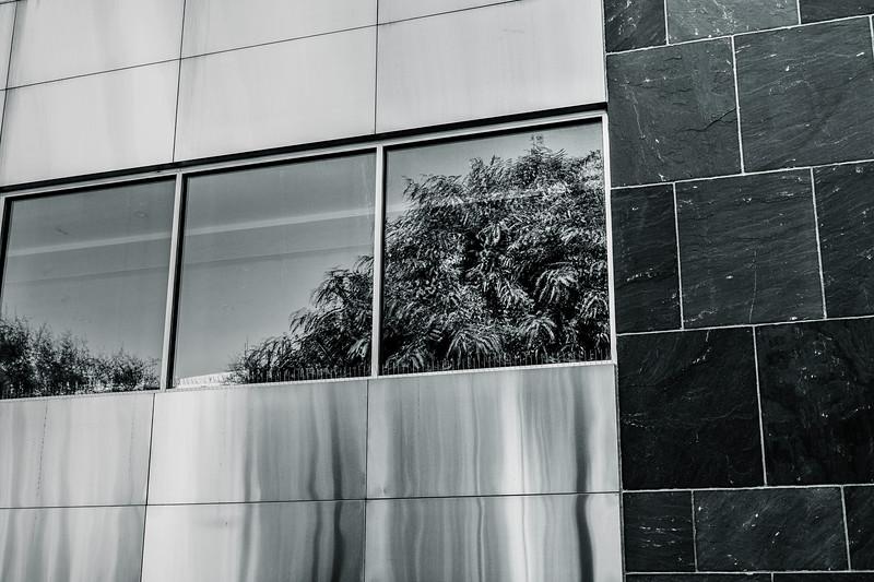 Scottsdale2012-008