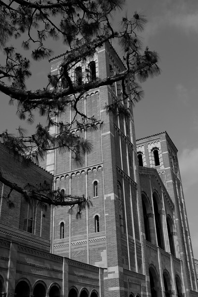 UCLA2011-24