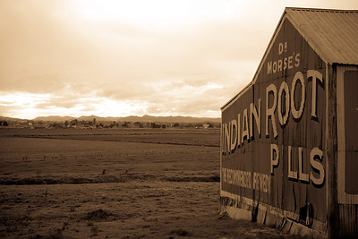 "Historical ""Dr Morse's Indian Root Pills"" shed. Looking out across plains near Morpeth, NSW"