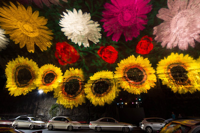 Vivid Sydney 2012 - Flowers projected onto tunnel wall, Argyle Street, Sydney
