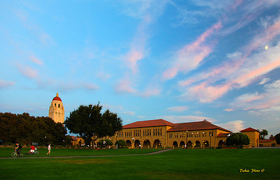 Stanford campus, California, on aug 27, 2009