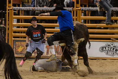 Professional Championship Bullriders 02.06.15