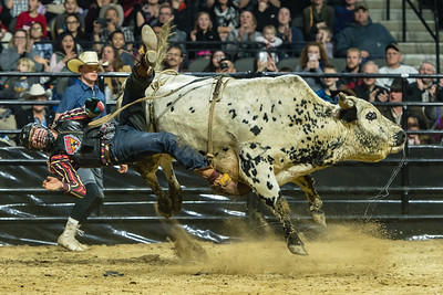 Professional Championship Bull Riders February 2, 2018
