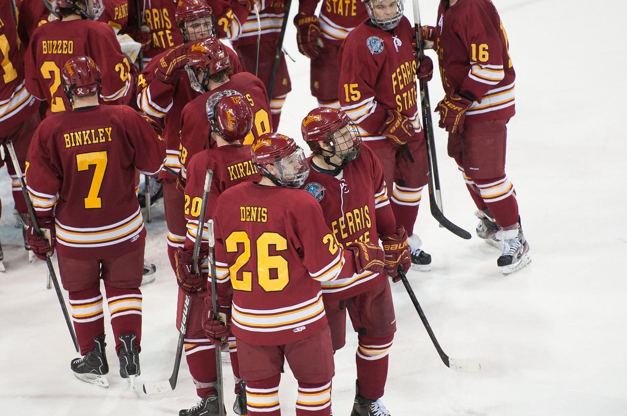Hockey vs ND_January 25, 2013DSC_1817