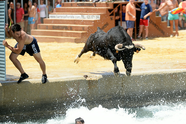 July 6, 2014 - Bous A La Mar (Bulls to the Sea) - Plaza de Toro - Denia, Spain during the 2014 Festa Major in honor of Santissma Sang (Most Holy Blood).