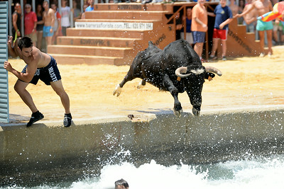 Bous a la Mar - Bulls by the Sea