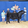 • AHFF Drifter 431B RGC Bull TAC_2423