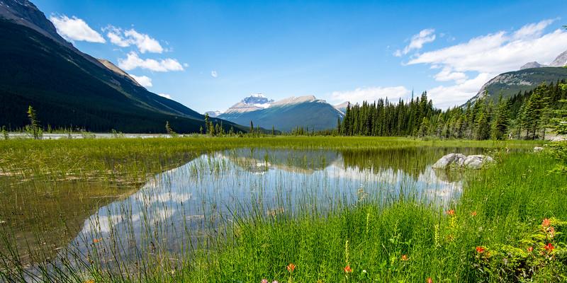 Rocky Mountain view, Alberta, Canada