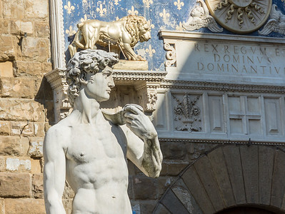 David in Front of Palazzo Vecchio, Florence, Italy