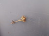 Boreal Yarrow - Achillea millefolium var. borealis (ACMIB)