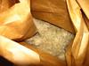 Coyotebrush - Baccharis pilularis (BAPI)