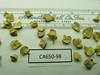 shadscale saltbush - Atriplex confertifolia (ATCO)