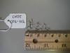 Esteve's pincushion - Chaenactis stevioides (CHST)