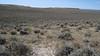 Wyoming big sagebrush - Artemisia tridentata subsp. wyomingensis (ARTRW8)