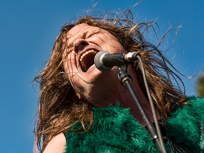 Steve McDonald of Redd Kross
