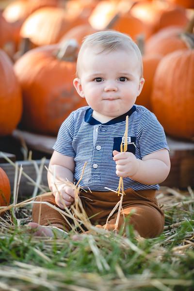 Pumpkins-October2019-12