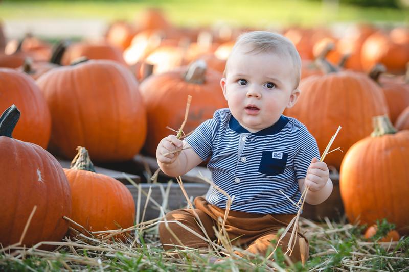 Pumpkins-October2019-10