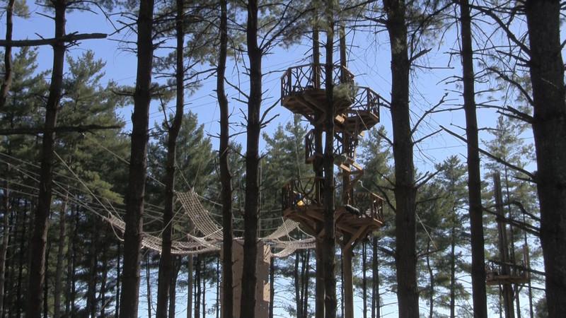 Beanstalk Journey's Zipline Park