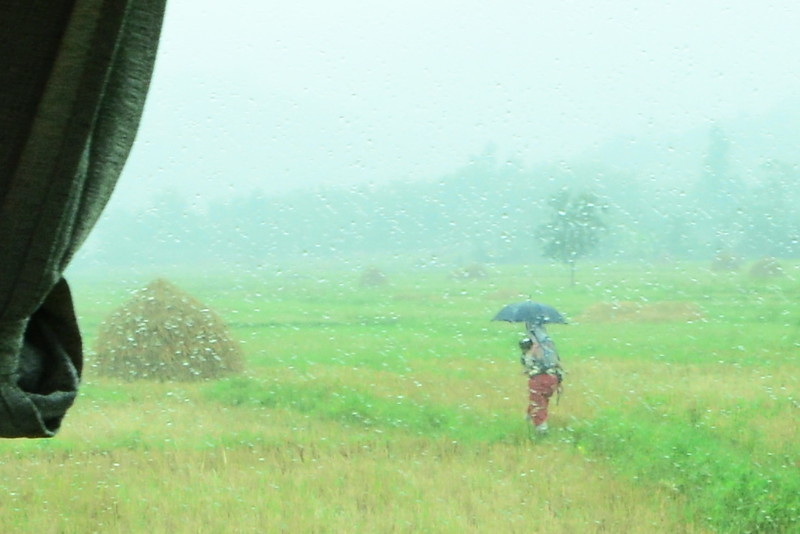 Rain Harvest - Kyaing Tong