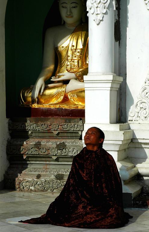 Sun Gazer - Yangon