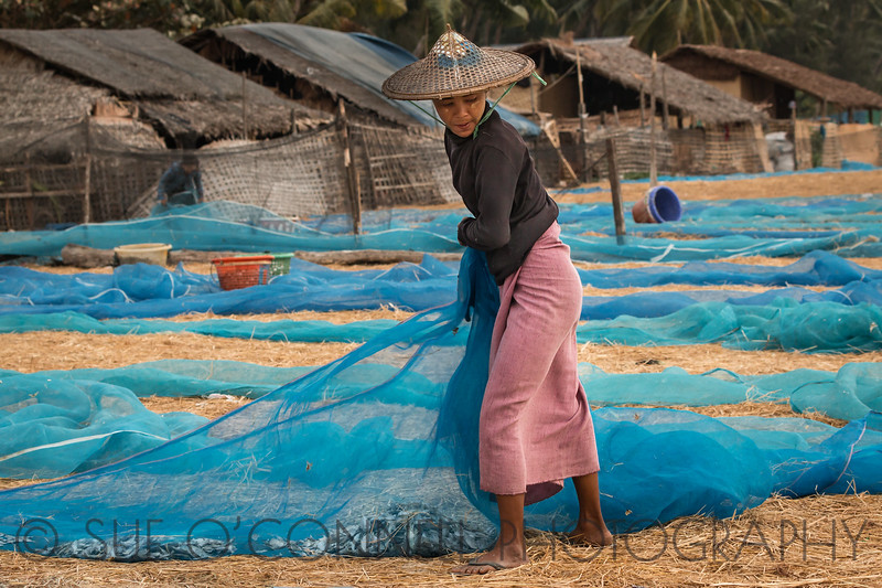 Gathering the Nets