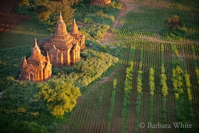 Bagan Temple At Dawn