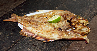 Fresh Cooked Fish