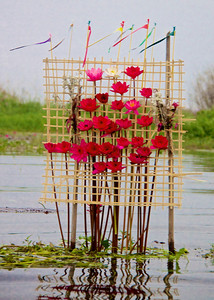 Area Sign Designed with Water Lilies
