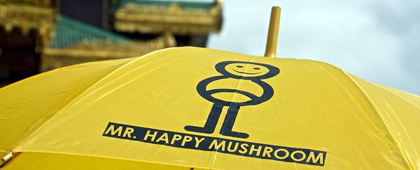 Mr. Happy Mushroom Umbrella