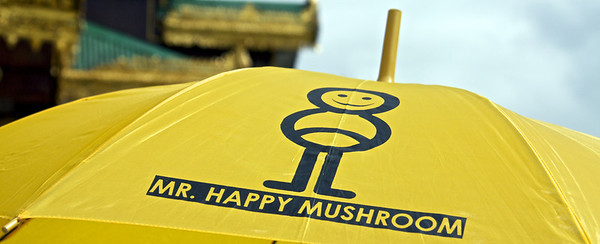 Mr. Happy Mushroom Umbrella