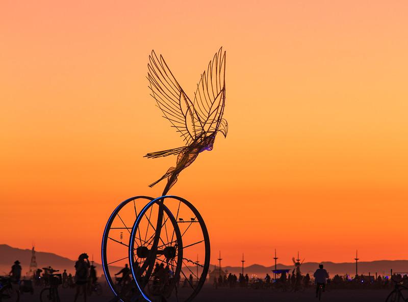 Taking Flight by Nicki Adani