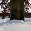 Frostburn 2009 the rune stone on rune stone hill