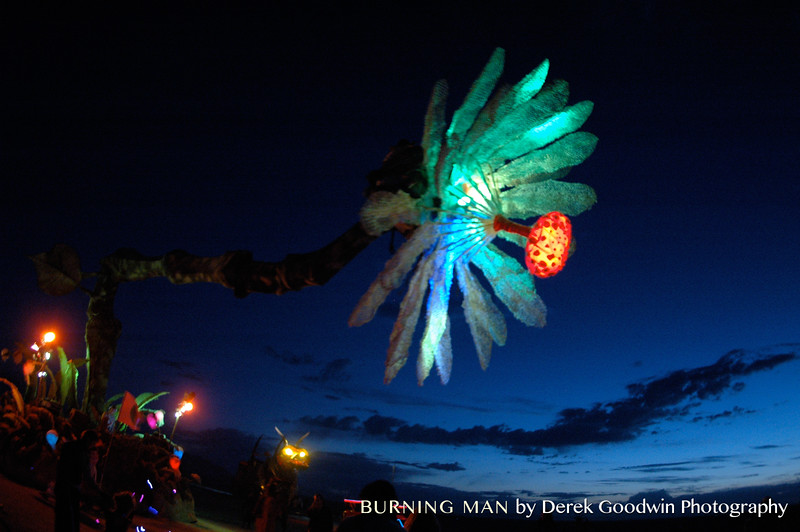 20060903-Burning-Man-2676
