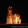 20130901-Burning_Man-1820