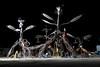 Burning Man 2008 1 343
