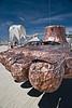 Burning Man 2008 1 120