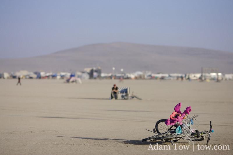 Derelict bikes