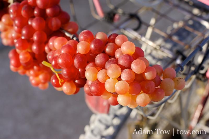 Grapes on a bike.