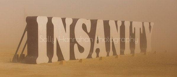 Insanity ~ Burning Man 2014