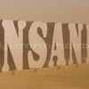 Insanity ~ Burning Man 2014