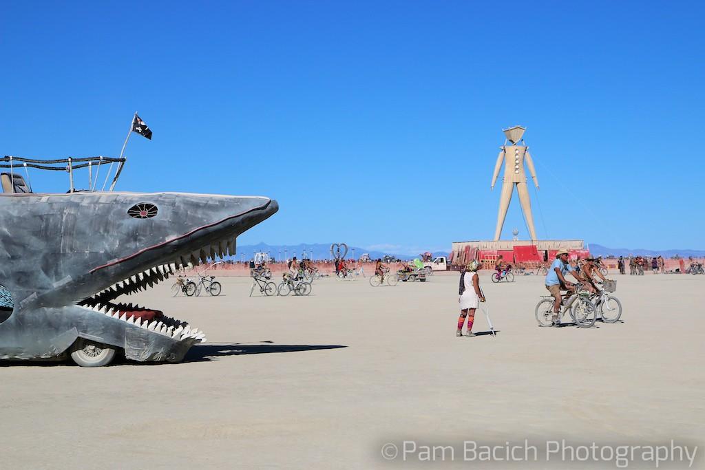 Shark vs Man