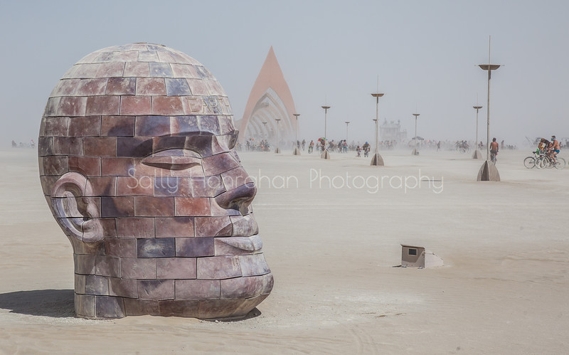 Brickhead Earth~Burning Man 2015